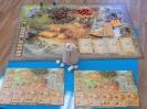 Epoka kamienia (gra strategiczna)