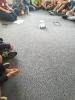 (Do)Wolnosć nauki – mój przyjaciel ROBOT, 15 maja 2018